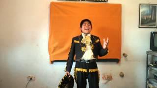 Pedrito fernandez/La de los hoyitos/Richard