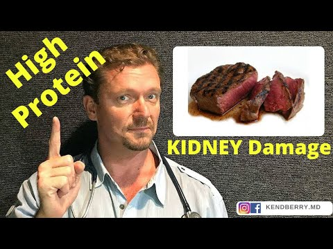 does-a-high-protein-diet-cause-kidney-disease?-[warning:-myth-alert]