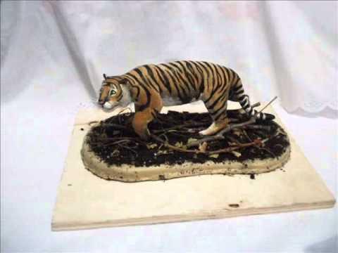 Уссурийский тигр фильм