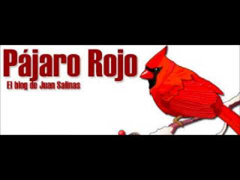Juan Salinas en La Otra - Radio Gráfica