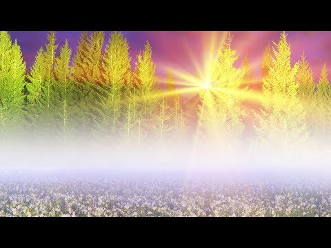 """Peaceful Music, Relaxing Music, Instrumental Music """"Nature's Peace' by Tim Janis"""