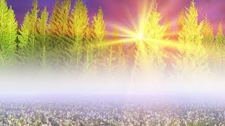 "Peaceful Music, Relaxing Music, Instrumental Music ""Nature's Peace' by Tim Janis"