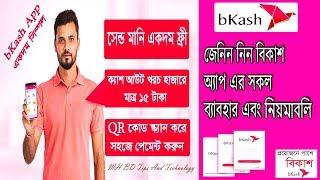 Download Bkash App Download Videos - Dcyoutube