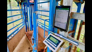 AgriEid Cattle Scales - Build your own Platform and Install in less than 30 minutes.