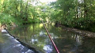 Wędkarstwo - Spinning w małych rzekach