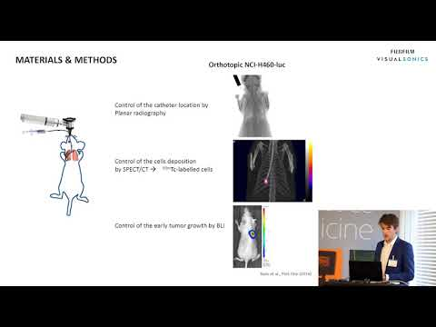 Photoacoustic Imaging in Multimodal Onco-Pharmacology Approach