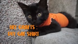 LILY CRAFTS : DIY CAT SHIRT