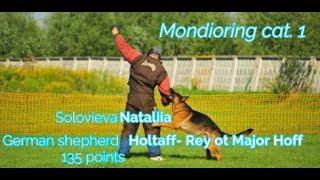 "MR1 ""Mafia"". Solovieva Nataliia.  German shepherd Holtaff- Rey ot Major Hoff 135 points"