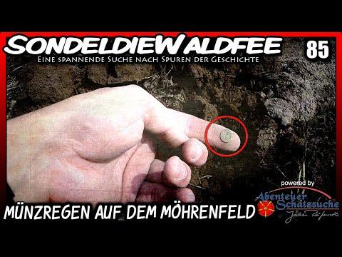 (85) Sondeln / Metal Detecting - Münzregen auf dem Möhrenfeld