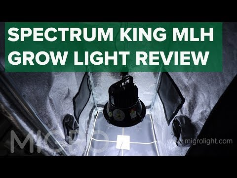 Spectrum king Mothers Little Helper (MLH) test and review