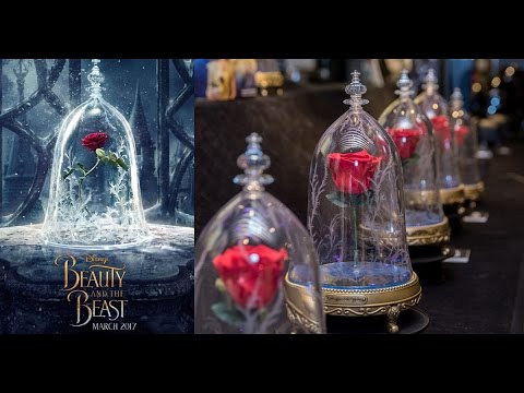 First Look Camino Beauty And The Beast Enchanted Rose Speaker