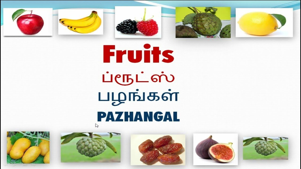 Vocabulary about Fruits with pictures including Tamil meaning