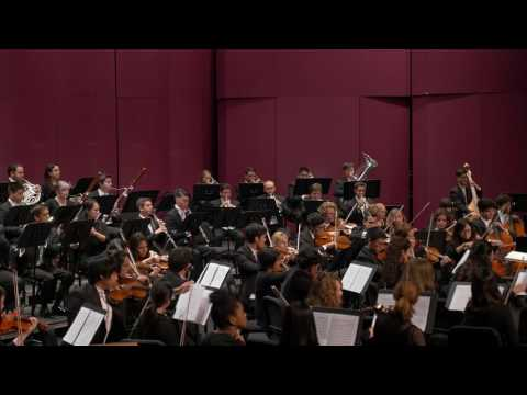 Symphony No  5 in E minor: Andante maestoso