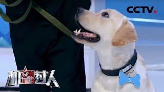 [机智过人第三季]优听检验继续升级 首次尝试动物声纹识别挑战| CCTV