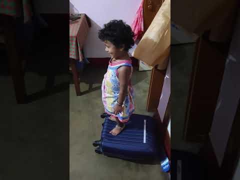 Safari Suitcase load test