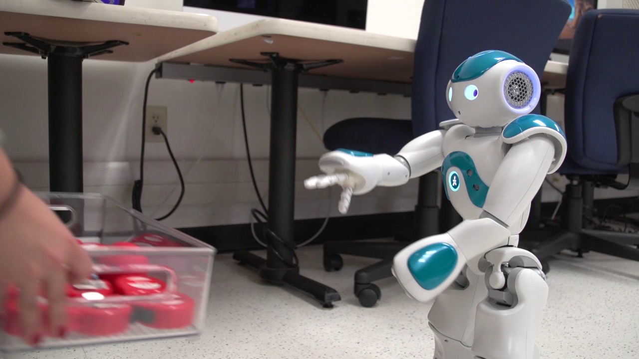 Computer Science Robot - Youtube-4036