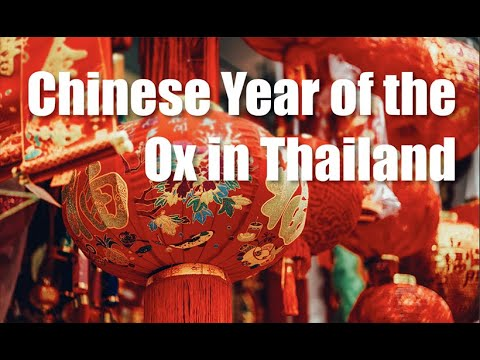 Happy Chinese New Year 2021 in Thailand, the Year of the Ox