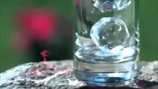 Питьевая вода «Архыз»(http://www.shop.akvaservice.ru/pitevaya-voda-19l/pitevaya-voda-arhyz.php client@akvaservice.ru +7 (495) 212-23-70 (с 7-00 до 23-00 без выходных) +7 (495) ..., 2014-04-28T12:22:51.000Z)