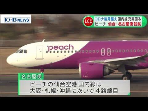 仙台 空港 国内線 運航 状況