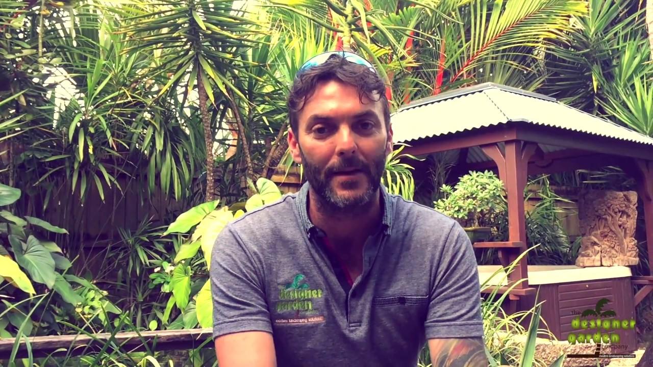 Matt Mitchely of Designer Garden Company in Cairns YouTube