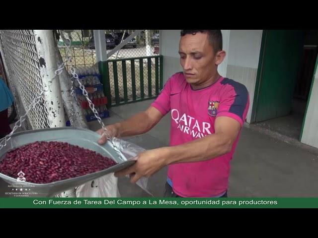 Con Fuerza de Tarea Del Campo a La Mesa, oportunidad para productores