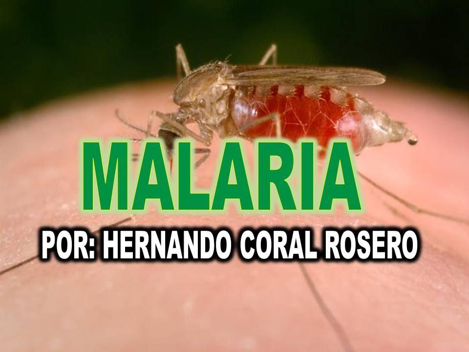infecciones parasitarias y la malaria
