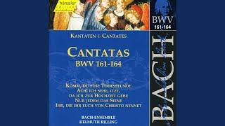Nur jedem das Seine, BWV 163: Aria: Nur jedem das Seine (Tenor)