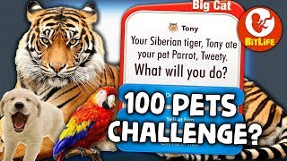 The 100 PETS CHALLENGE in Bitlife but my pet Tiger keeps eating them