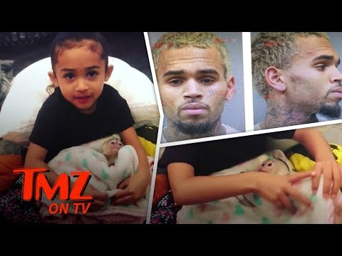 Chris Brown's Monkeying Around Could Get Him Into Trouble | TMZ TV