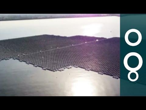 Solar panels take to the water as new farms flourish