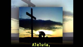 Aleluia - Alexandra Burke (Tradução)