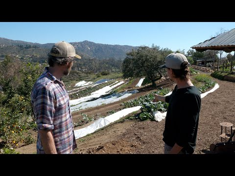Building Terraces to Farm on a Hillside | Sage Hill Ranch Gardens