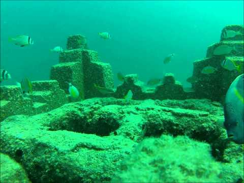 Bahrain artificial reef area 10 sept 2012
