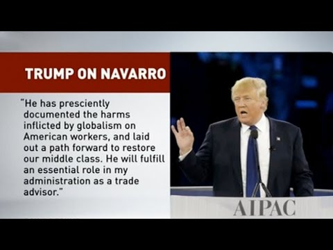 US President-elect Trump picks China hawk for new trade post