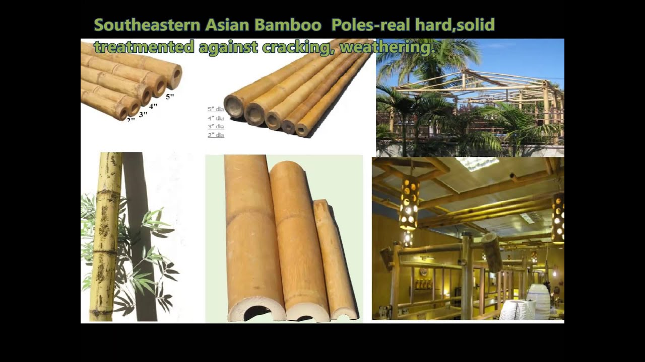 Eco diy fences privacy fence bamboo rollpanel how to installed a eco diy fences privacy fence bamboo rollpanel how to installed a framed fencing rolled bamboo youtube baanklon Image collections