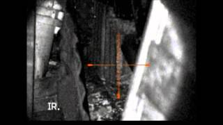 rat shooting with photon xt and bsa xtx tuned 22 air rifle