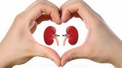 hqdefault - Facts About Chronic Kidney Disease