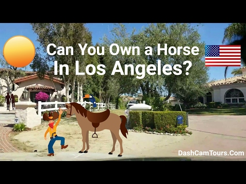 Los Angeles Driving Tour: Hollywood Celebrities' Homes with Horses 🐎. Hidden Hills, California, USA