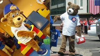 Chicago Cubs sue man behind fake mascot who punched a fan in a bar