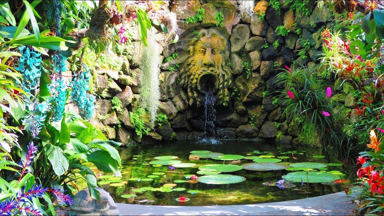 Giardini la mortella isola d 39 ischia italy gardens for Giardini immagini
