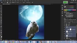 Tutorial - Eagle Owl (#Photoshop CC)