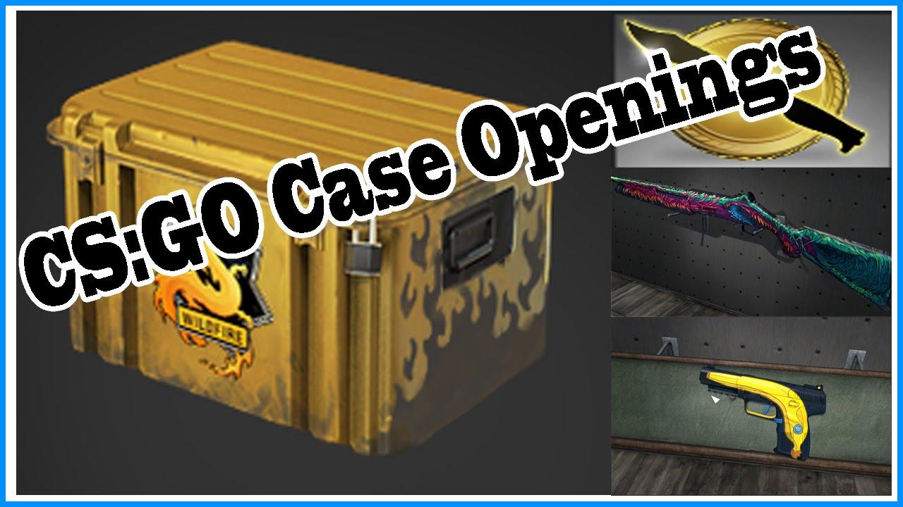 My First CSGO Case Opening (EPIC KARAMBIT KNIFE ... - YouTube