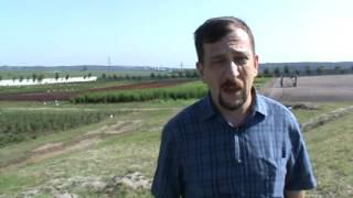 Отзыв об услугах киевской юридической компании Премиум-Аутсорсинг(, 2016-06-22T15:44:35.000Z)