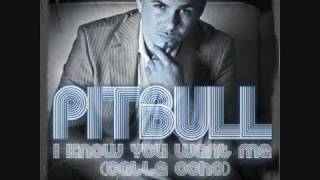 Pitbull - I Know You Want Me (Calle Ocho) [More English Extended Version] *HQ With Lyrics