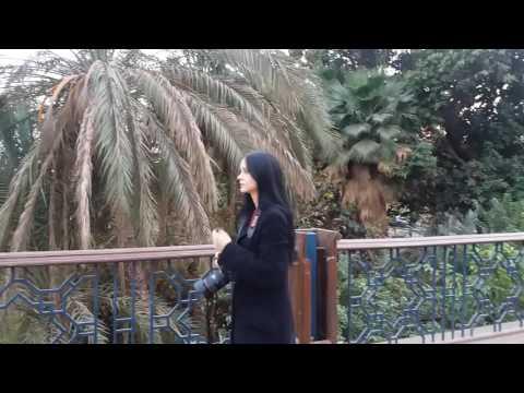Cairo attractions. Manial bridge, Cairo unique and unusual Tours