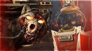 Top 5 MYTHS In Call of Duty Zombies!