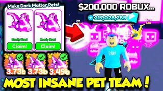 Spending $200,000 ROBUX To Get AN INSANE PET TEAM In Pet Simulator X!! (Roblox)