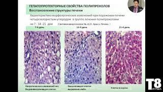 Смотреть видео ТАЙГА 8 НАУКА Медконференция Москва 2014 Бугольцев Э  М  Полипренолы онлайн