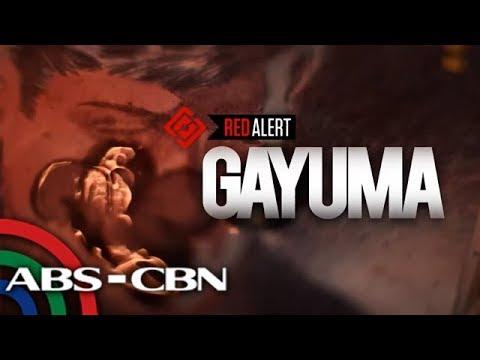 Red Alert: Gayuma