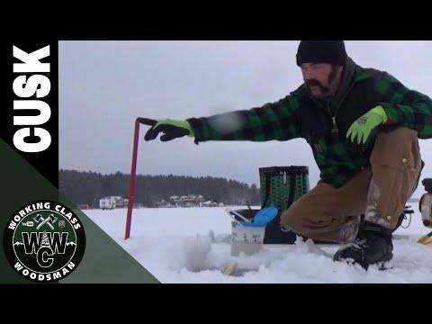 Cusk (AKA Burbot) Fishing In New Hampshire On Lake Winnipesaukee (Lota Lota)